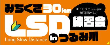 みちくさ30kmLSD練習会in つるみ川